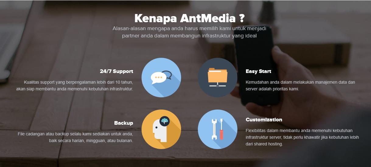 ant media44